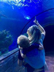Koala and Mama Malta Babywearing at the Malta National aquarium in oscha starry night wisla woven wrap